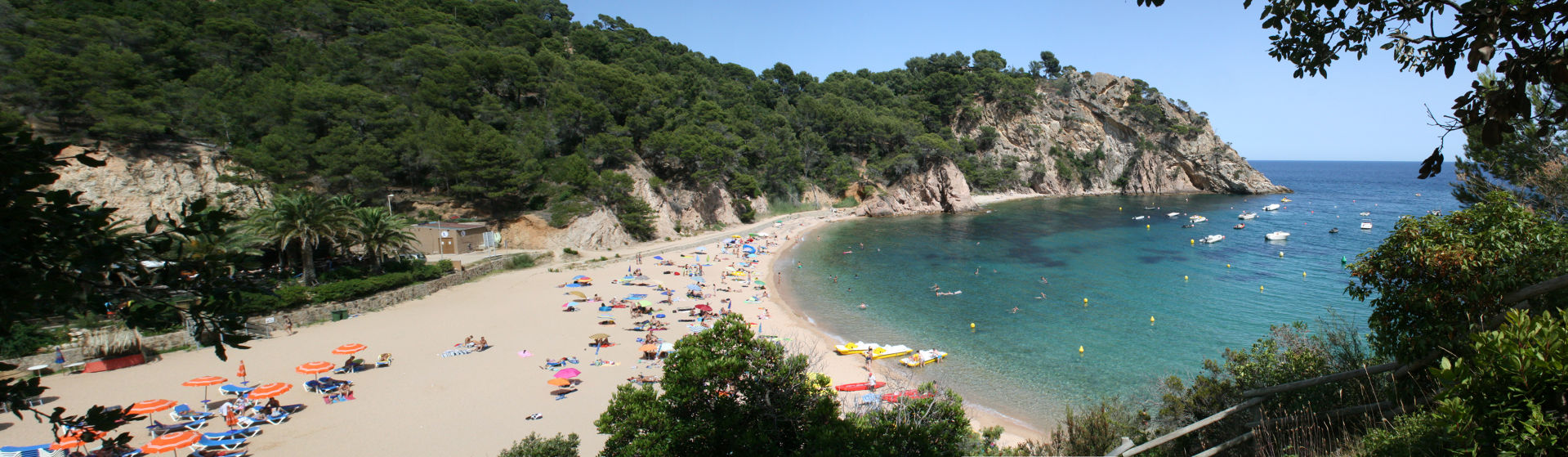 Beaches and coves de Llafranc