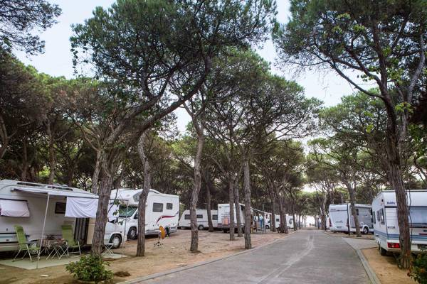 Camping Blanes - Blanes - Image 3