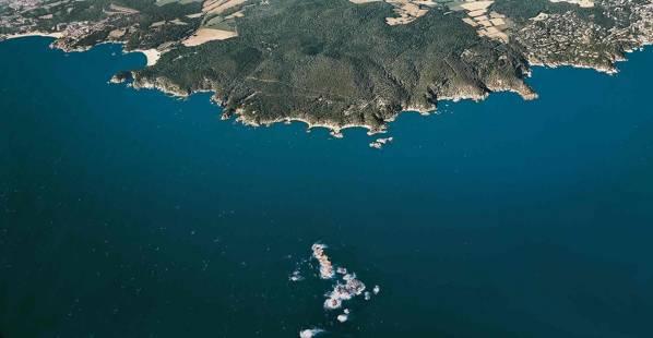 Formigues islands