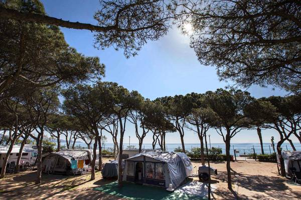 Camping Blanes - Blanes - Image 1