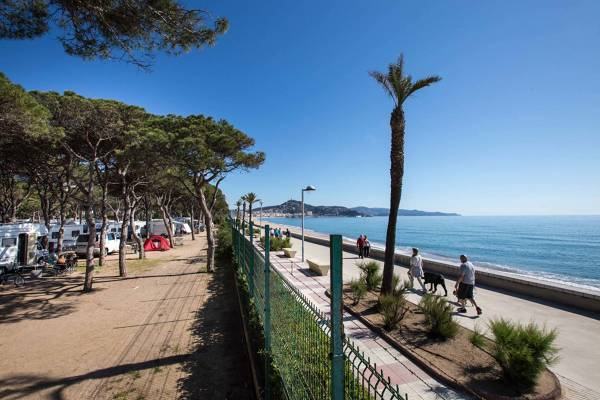 Camping Blanes - Blanes - Image 5