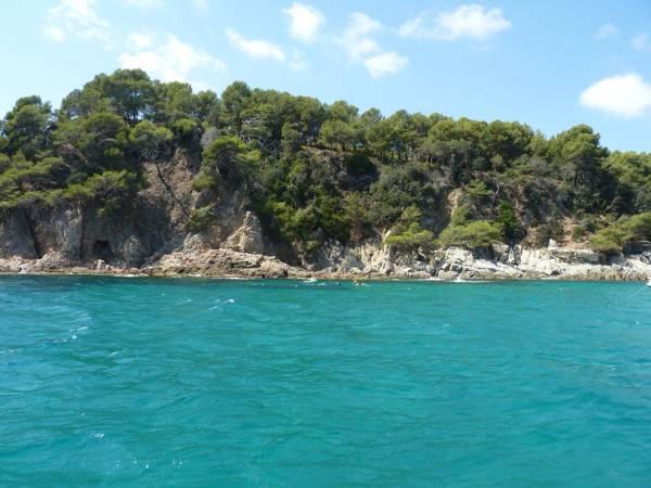 Ecosafari- Passeig en vaixell