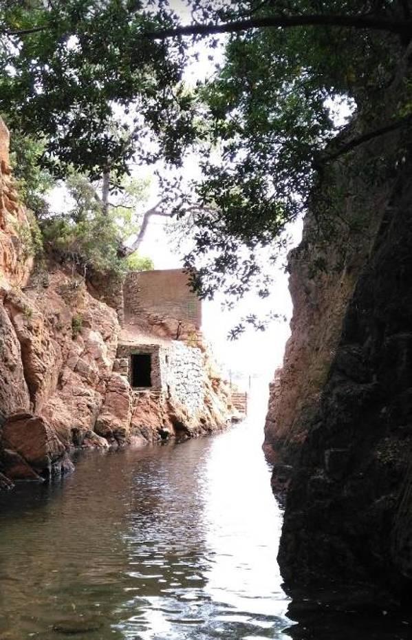 Cala d'Es Cranc, del Peix and Mussols